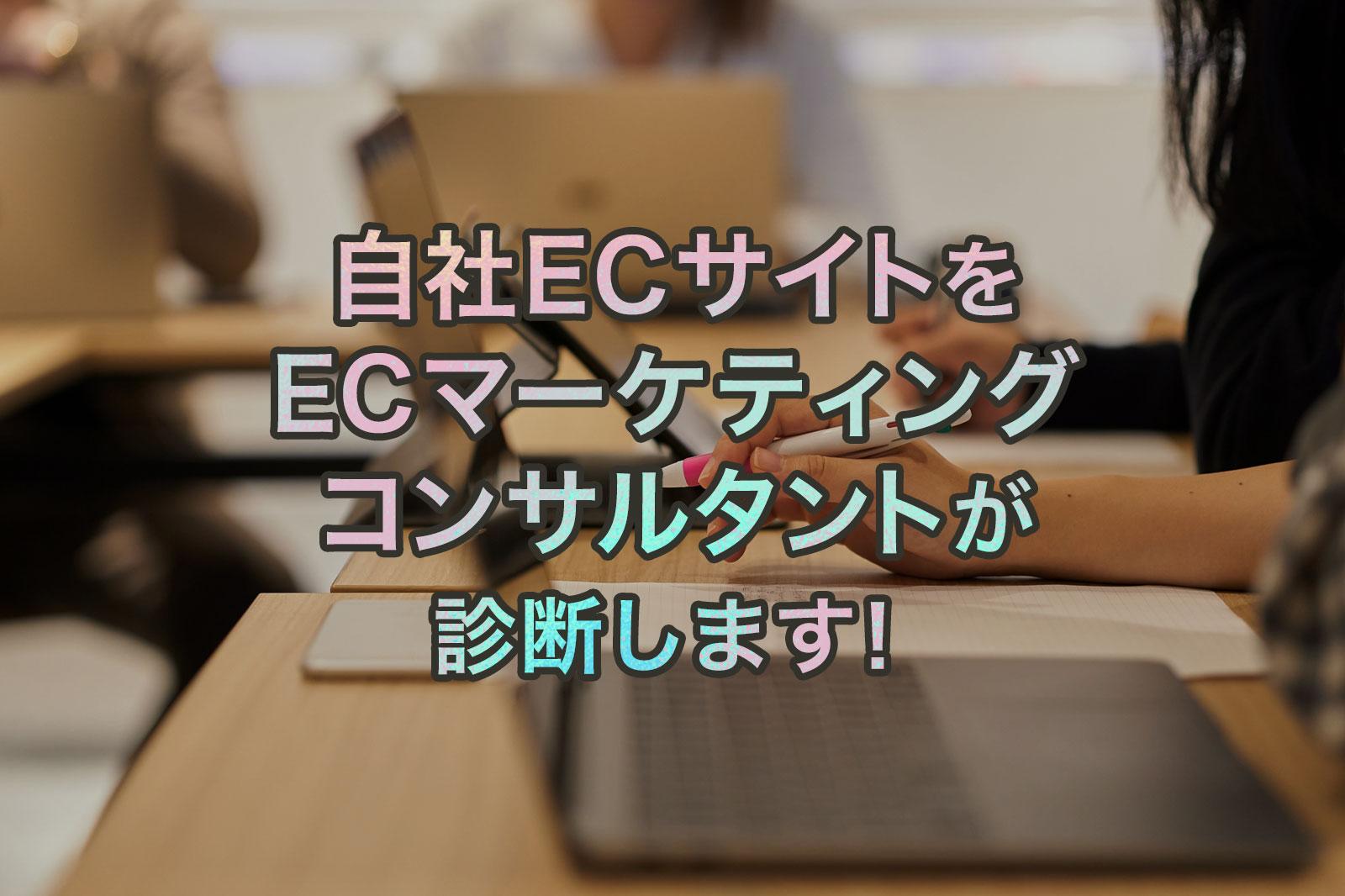 自社ECサイトをECマーケティングコンサルタントが診断します